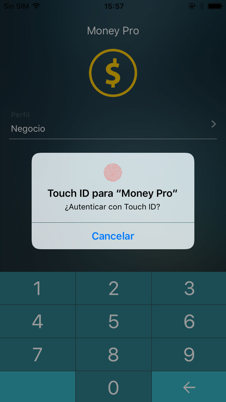 Money Pro para iPhone - Touch ID