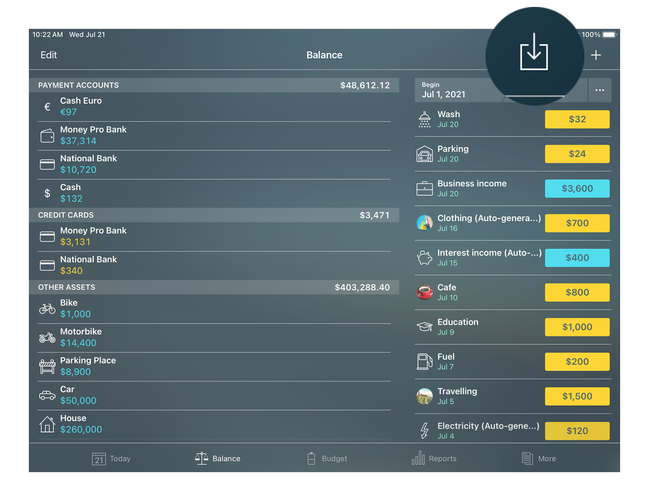 Money Pro - OFX, CSV import (iOS, Mac, Android) - iPad