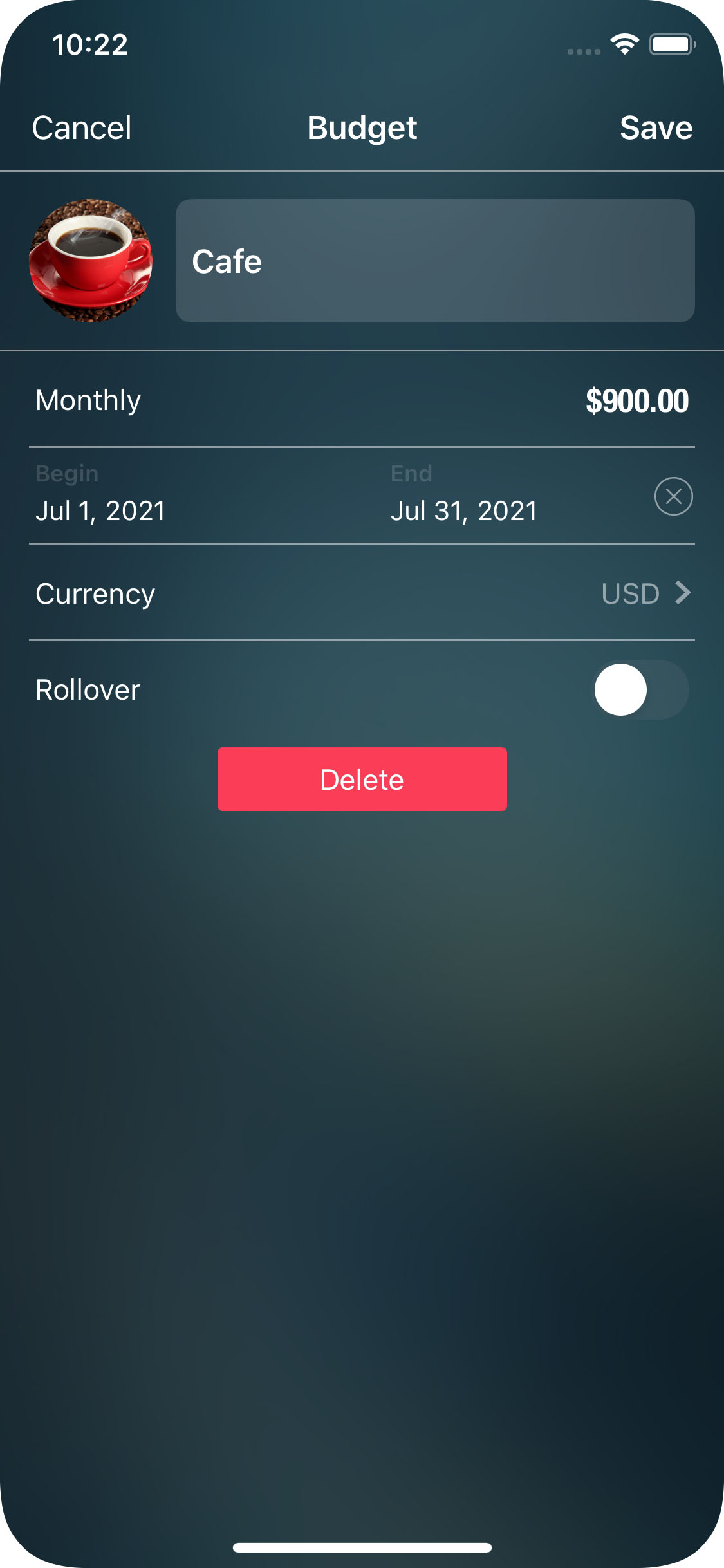 Money Pro for iPhone - Budget - Details