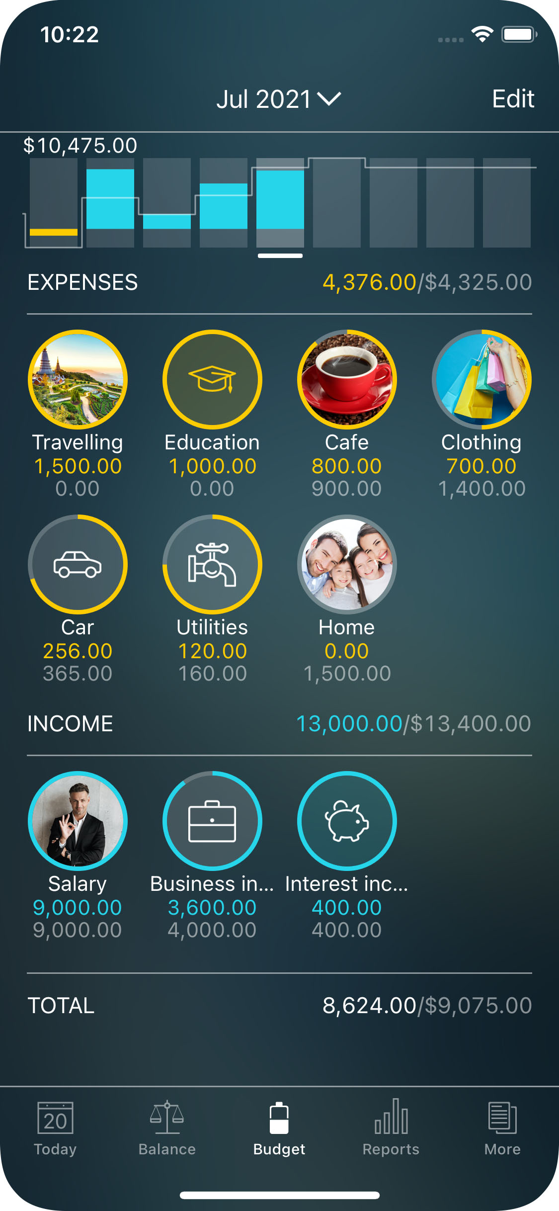 Money Pro - Tracking a budget (Budget widget) - iPhone