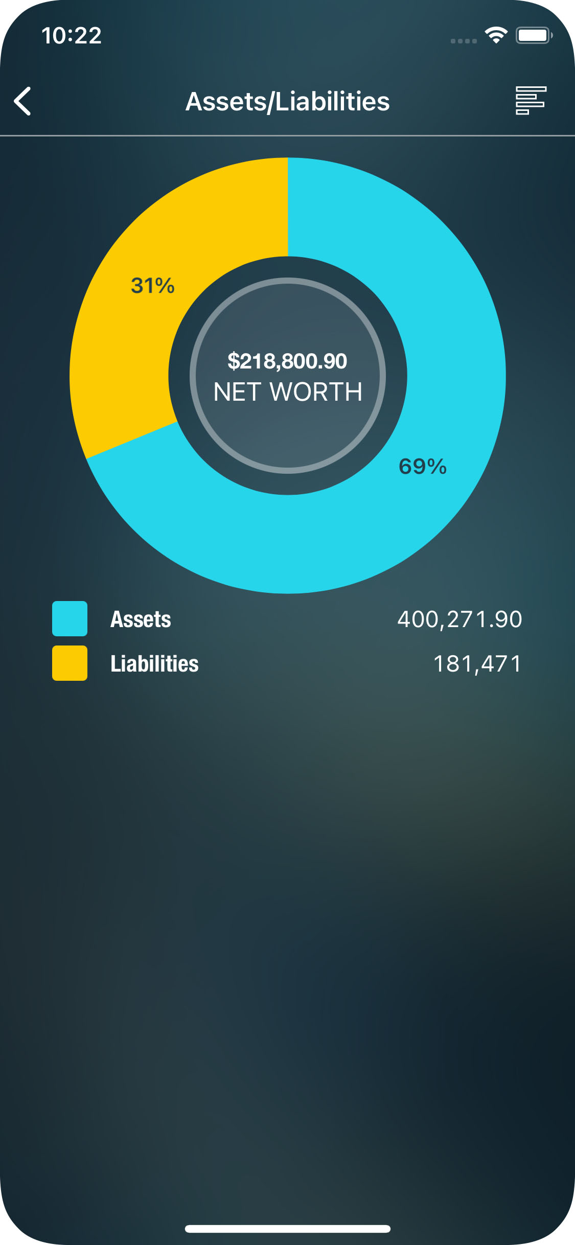 Money Pro for iPhone - Reports - Assets/Liabilities