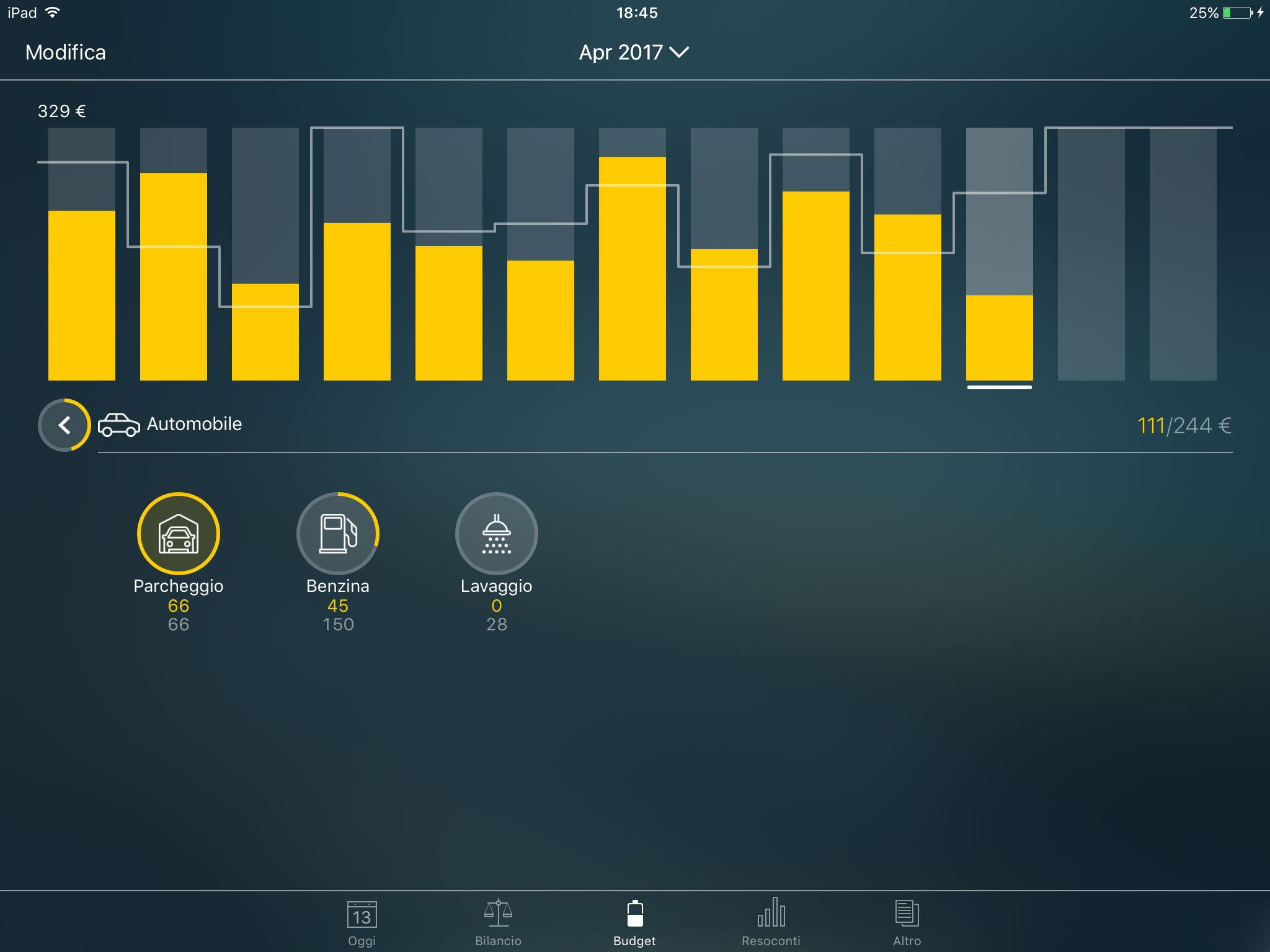 Money Pro - Categorie e sottocategorie - iPad