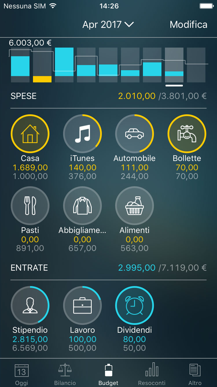 Money Pro - Monitoraggio di un budget (widget Budget) - iPhone