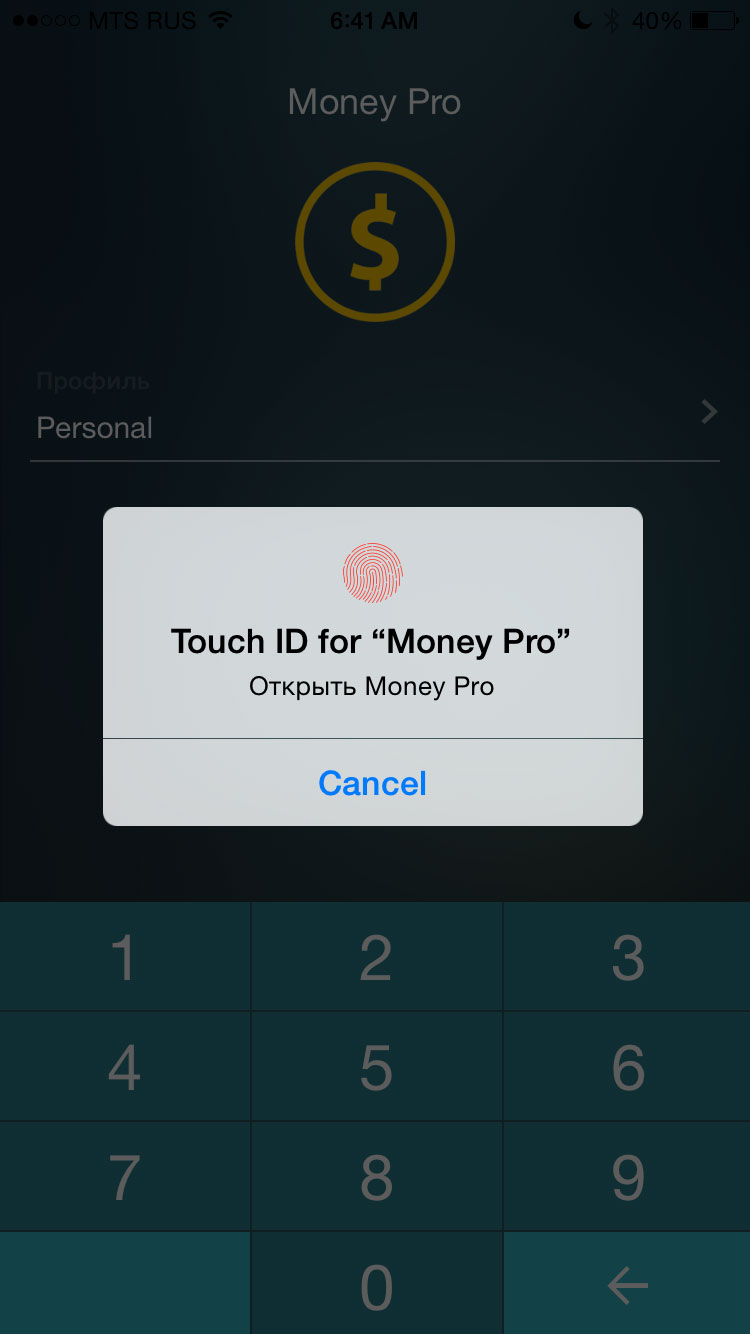 Money Pro - Система идентификации Touch ID (Face ID) - iPhone